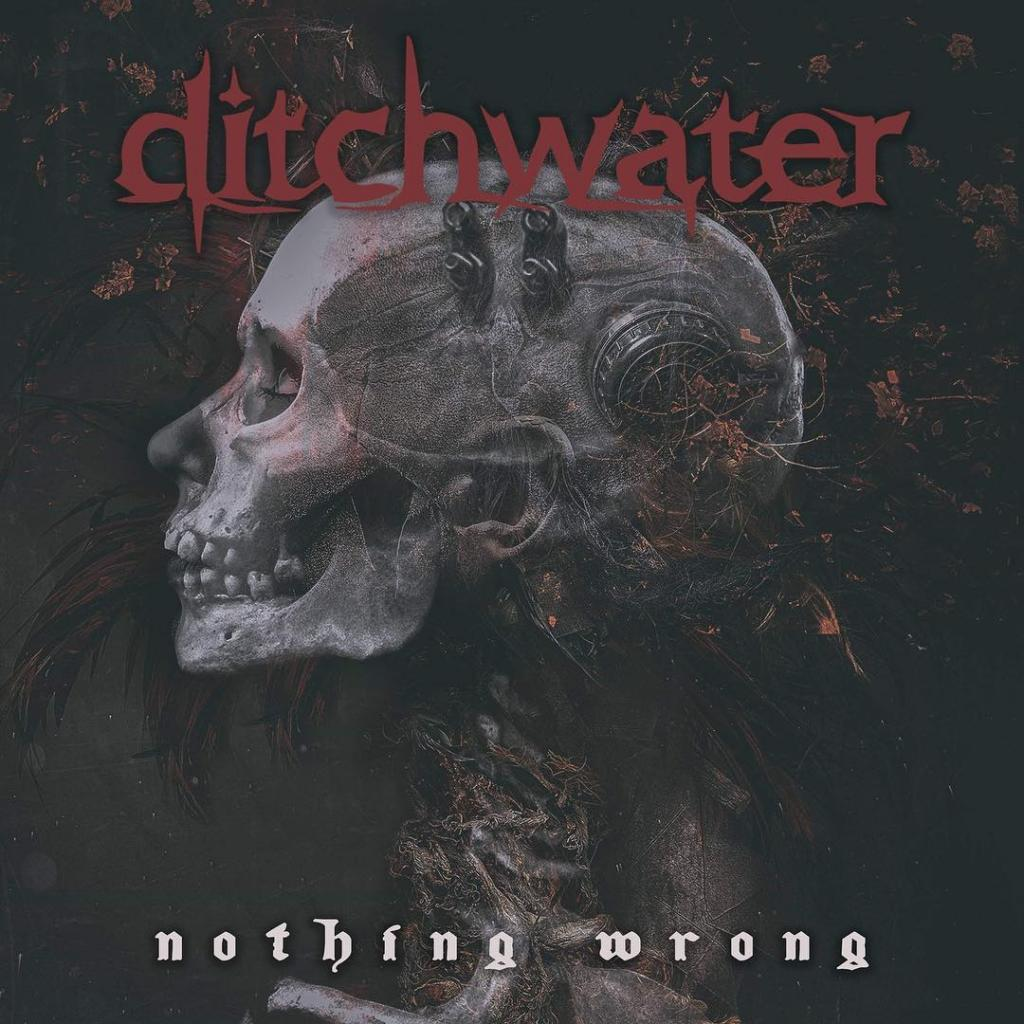 Ditchwater - Nothing Wrong (2019)