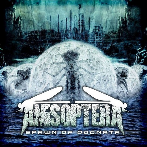 Anisoptera - Spawn of Odonata (2018)
