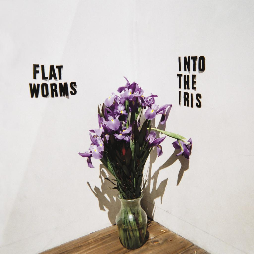 Flat Worms - Into the Iris (2019)
